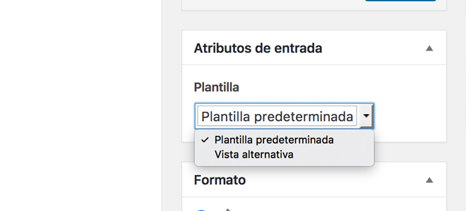 Atributos de entrada en WordPress 47