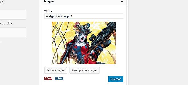Widget de Imagen